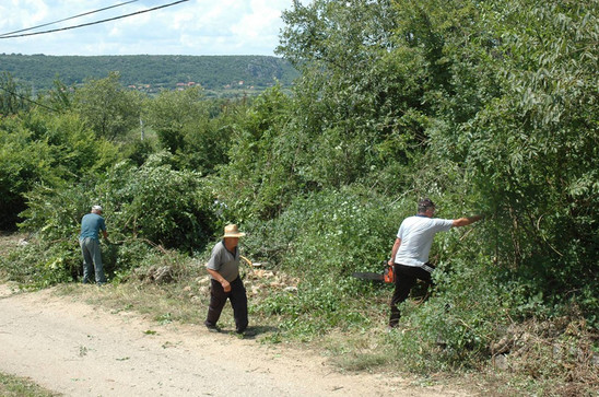 Fig. 26: Cleaning the vegetation in 2009. Credit: MHAS documentation