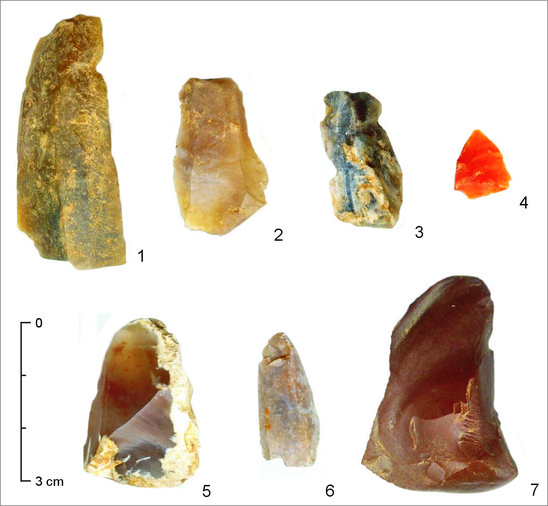 Fig. 6: Kostoľany pod Tribečom, cadastral sections Bilkeš and Nad cestou: lithic flakes, blades and raw material for the production of stone tools from the Eneolithic era. Credit: Department of Archaeology, Faculty of Arts, Constantine the Philosopher University in Nitra,  photo by Noémi Pažinová